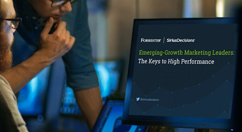 Emerging-Growth Marketing Leaders: The Keys to High Performance