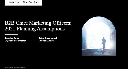 B2B Chief Marketing Officers: 2021 Planning Assumptions