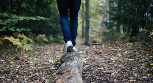 What You Should Know About Maintaining a Balanced Life