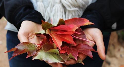 5 Ways to Fall into Autumn Skincare