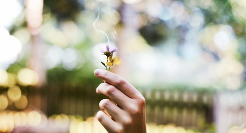 Spring Blossom: 5 Tips for Emerging Your Mind and Body from Winter Hibernation