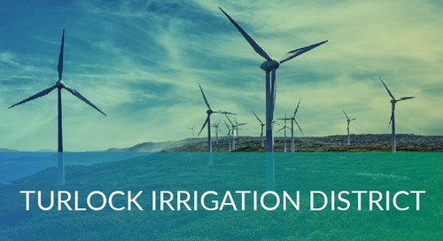 Turlock Irrigation District Automates their Benefit Administration