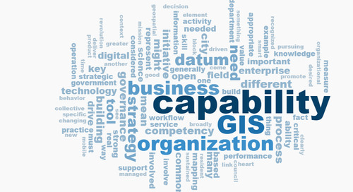 The rise of GIS as a business capability