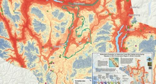 Évaluation multicritères visant à déterminer l'habitat des oiseaux forestiers pendant la migration printanière