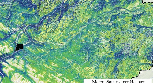 Abondance projetée des lichens arborescents en 2025