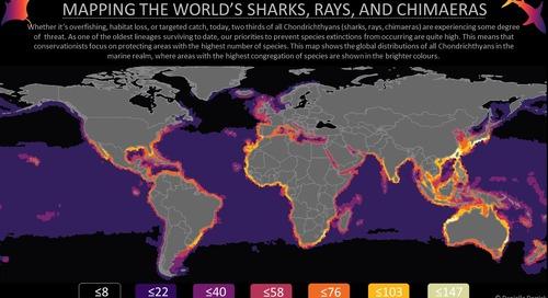 La relation entre les SIG et la protection de l'environnement marin