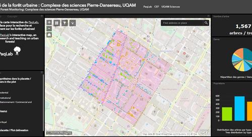 Application du mois : Suivi de la forêt urbaine à Montréal
