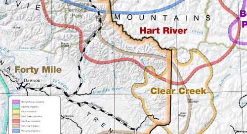 Planification pour la région de Dawson : aires de répartition des hardes de caribous