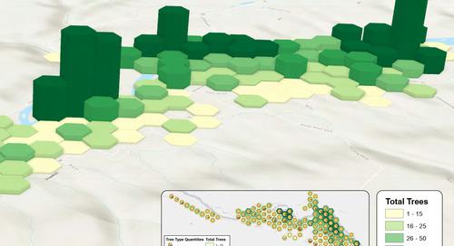 Point de mire sur Drumheller : inventaire de la foresterie urbaine