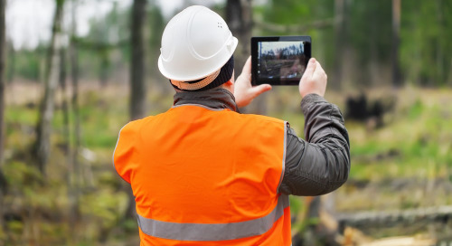 Paperless field data collection made easy