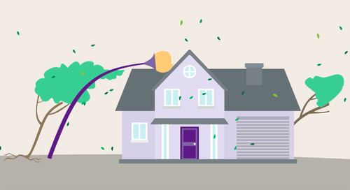 What to do if your home is damaged by wind