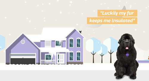 Getting your home winter-ready