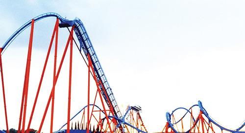 A rollercoaster year