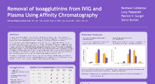 Removal of Isoagglutinins from IVIG and Plasma Using Affinity Chromatography