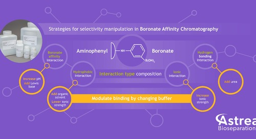 Strategies for selectivity manipulation in Boronate Affinity Chromatography - Infographic