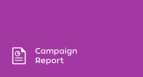 Super Bowl 2017 Campaign Engagement Report