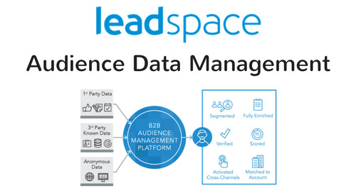 Leadspace Audience Data Management