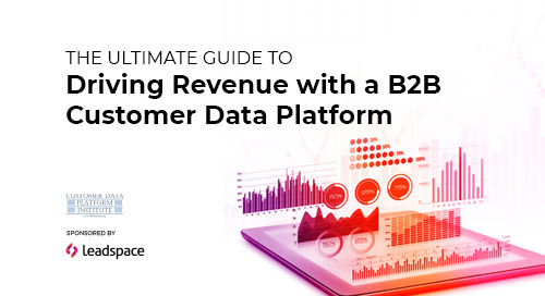 The Ultimate Guide to Driving Revenue with a B2B Customer Data Platform