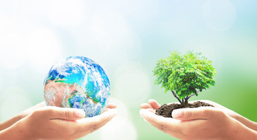 Celebrate Earth Day, Use Video Conferencing