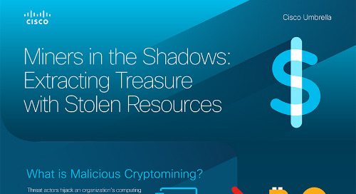 Miners in the Shadows: Extracting Treasure with Stolen Resources