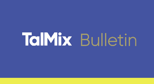 Talmix & Management Consulting: Q1 Bulletin