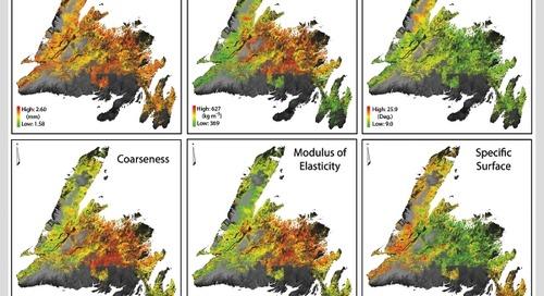 Cartographie des caractéristiques de fibre dans les forêts de Terre-Neuve-et-Labrador