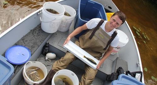 L'étudiant en maîtrise DavidBenoit exploite la technologie SIG sous l'eau pour étudier l'écologie aquatique