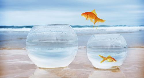 Améliorer le « style de vie » dans votre organisation