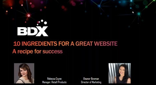 Recorded Webinar: 10 Ingredients For A Successful Website -- A Recipe For Success