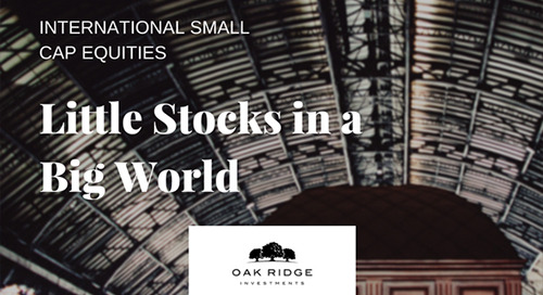 Little Stocks in a Big World