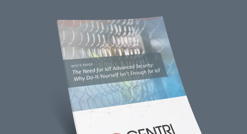 The Need for IoT Advanced Security: Why Do-It-Yourself Isn't Enough for IoT