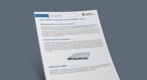 Intel® DPDK Performance on the SAU5081I Server