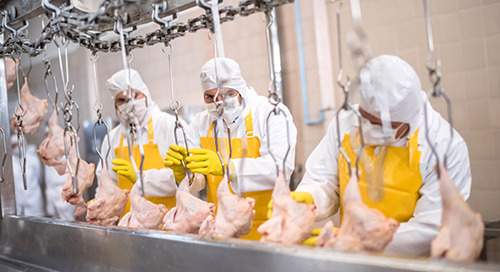 New Construction is Booming in the Food Processing Industry