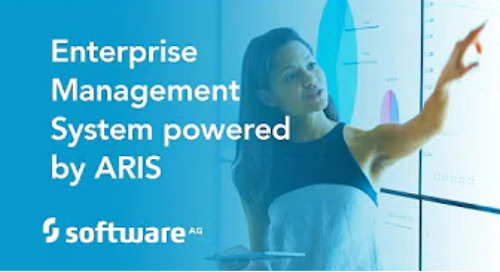 Enterprise Management System powered by ARIS