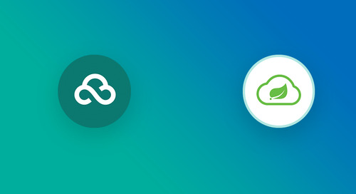 Building Spring Microservices with Cloud Foundry's New Container Networking Stack