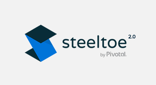 Steeltoe Turns 2.0, Adds Support for ASP.NET Core 2.0, CredHub, and a SQL Server Connector