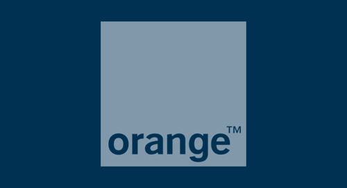 Orange France: Adopting Pair Programming and Agile Methodologies to Develop Software Products Customers Love