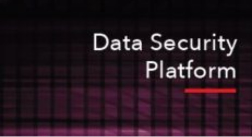Technical Product Brief: Protegrity Data Security Platform