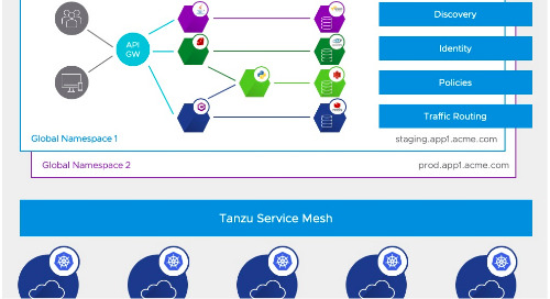 Tanzu Service Mesh and Global Namespaces