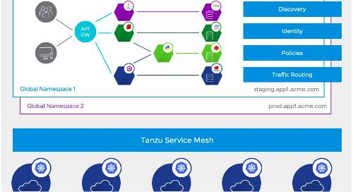 Tanzu Service Mesh and Global Namespaces