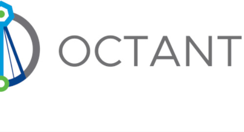 Seeing is Believing: Octant Reveals the Objects Running in Kubernetes Clusters