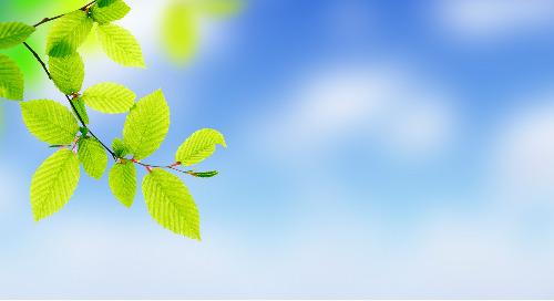 Introducing Azure Spring Cloud Enterprise Tier