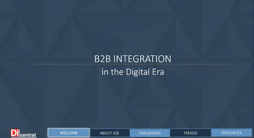 DiWeb Expert On Call: B2B Integration in the Digital Era
