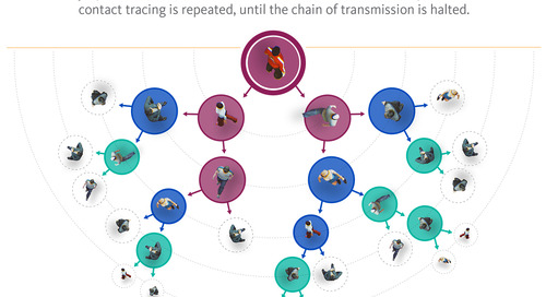 Infographic: How Contact Tracing Works