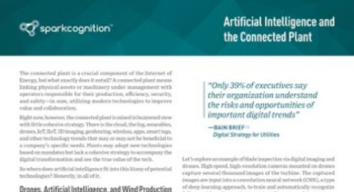 White Paper: Artificial Intelligence and the Connected Plant