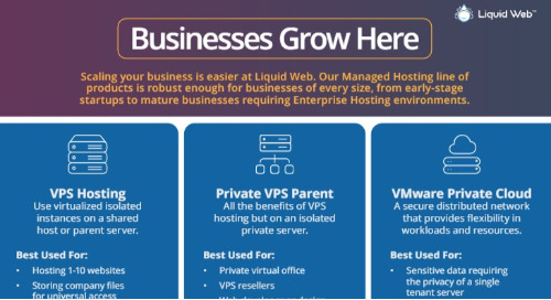 Grow Your Business With Managed Cloud Hosting at Liquid Web
