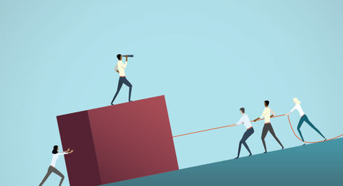 Don't Do It Alone: The Need for Independent Insight and the Role of Outside Expert Committees