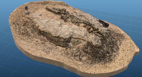 El Instituto Smithsoniano escanea en 3D el pasado