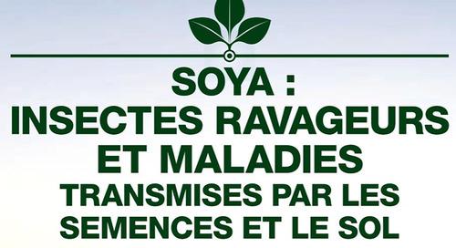 Soya: Insectes ravageurs et maladies transmises par les semences et le sol