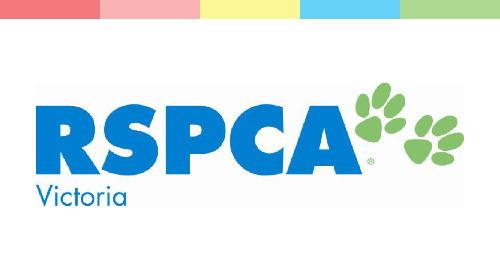 Good News from RSPCA Victoria
